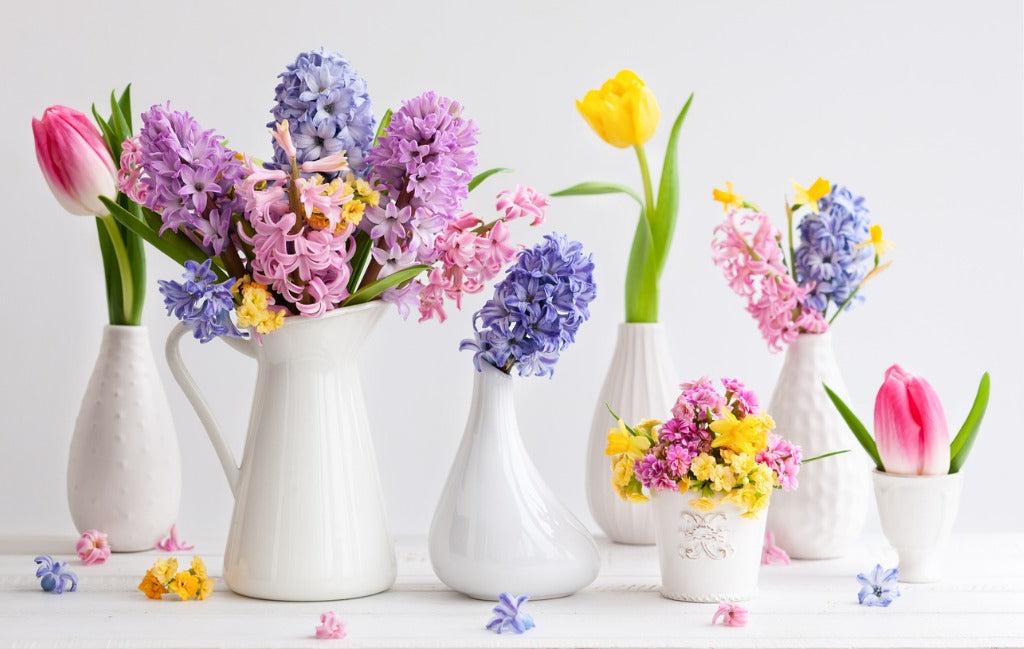 10 Types Of Easter Flowers And Their Meanings Orchid Republic