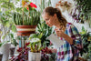 Indoor Plant Care: How to Water Your Houseplants Properly