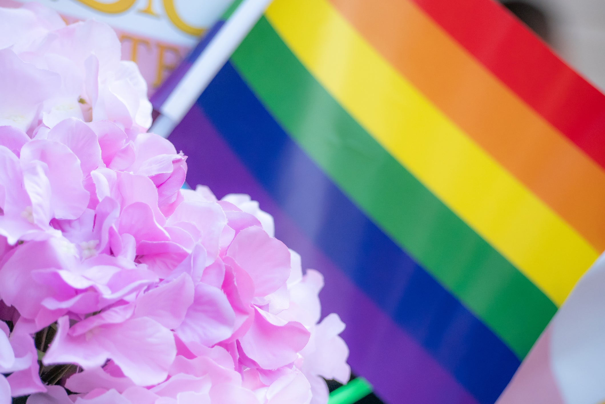 pride-flag-flowers