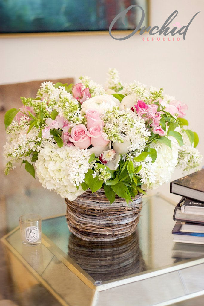 Dreams of Spring