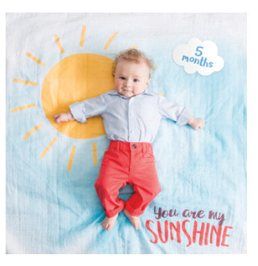Baby's First Year Blanket & Cards Set - You Are My Sunshine
