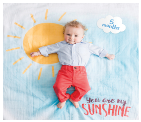 Baby's First Year Blanket & Cards Set-You Are My Sunshine #22588