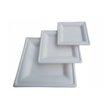 Eco-Friendly Bagasse Square Plate [16 x 16 cm] - 500 pcs - (Item: GS-06)