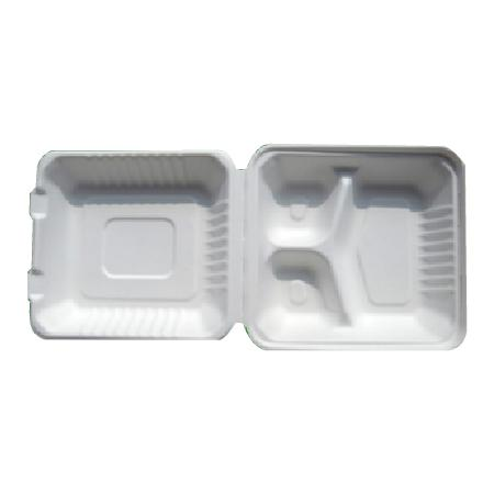 Eco-Friendly Bagasse 8