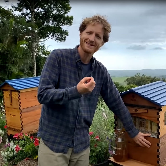 Beginner Beekeeping - March