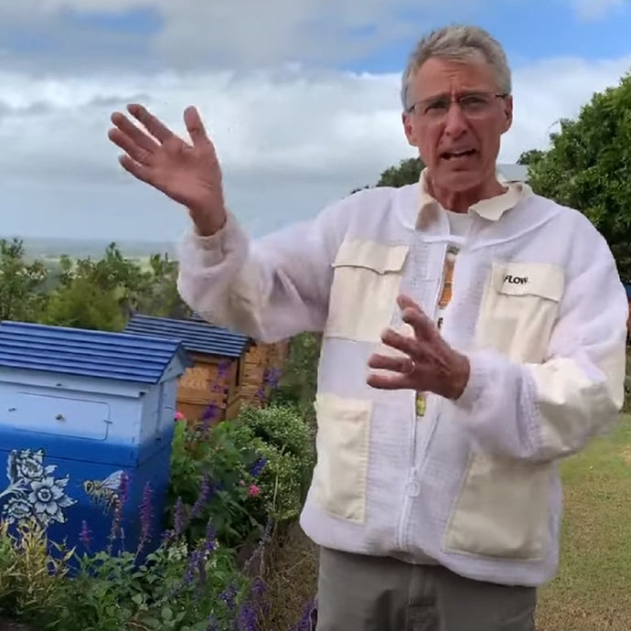 Beekeeping Q & A with Stu Anderson