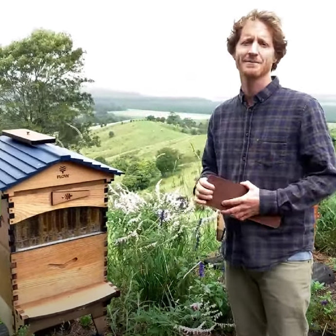 Beginner Beekeeping - April