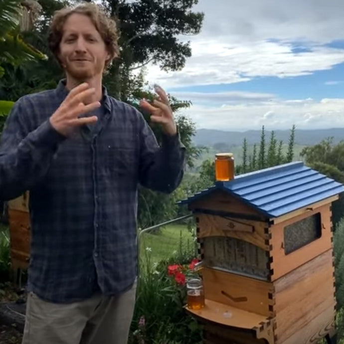 Beginner Beekeeping May