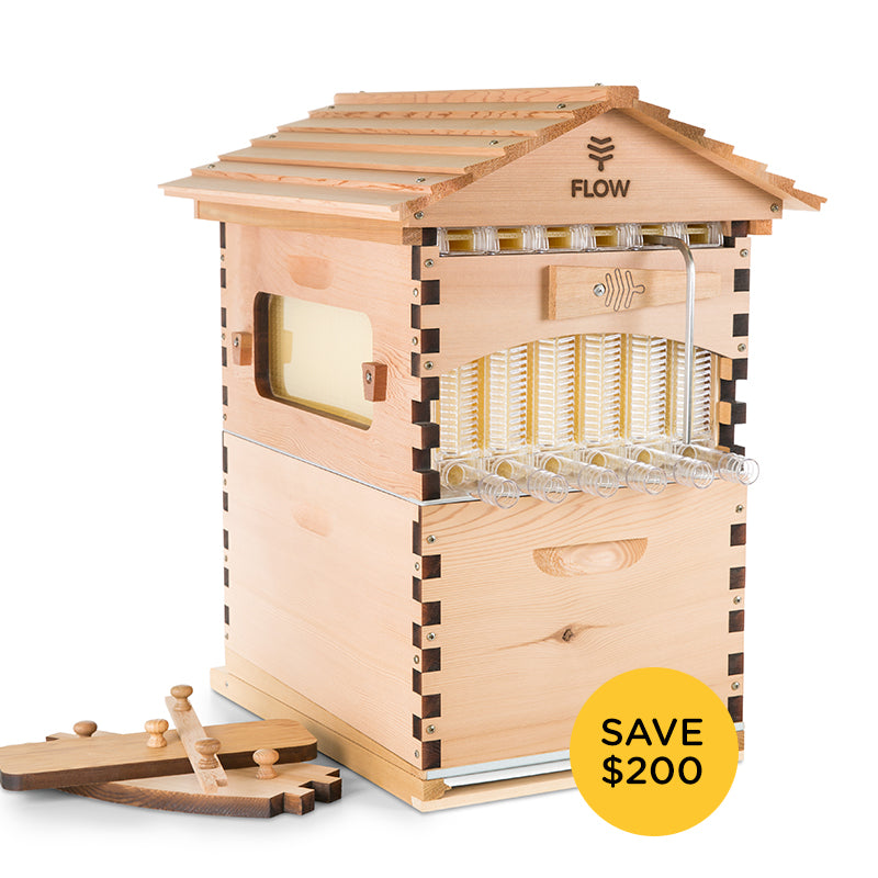 The Flow Hive Classic Cedar 6 Frame (Character Grade)