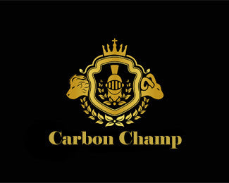 Carbon Champ Matte clean and sealer 100ml