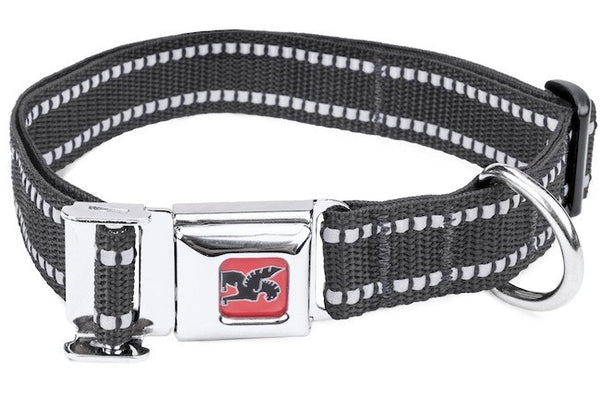 CHROME Dog Collar PALMER3000