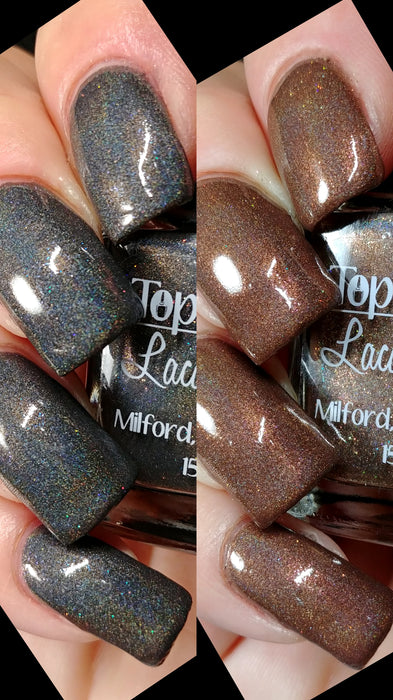 Fall Holo Fun - Full Collection - August 2019 (10 bottles)