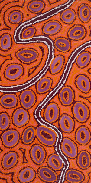 Janganpa Jukurrpa (Brush-tail Possum Dreaming) - Mawurrji