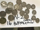 16 Buffalo Nickels with Visible Dates