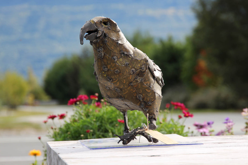 "Metal Kea Sculpture ""Kevin"" by Hannah Kidd"