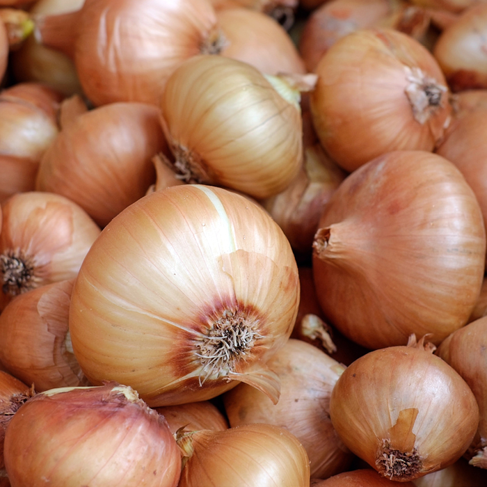 Onions Brown EACH