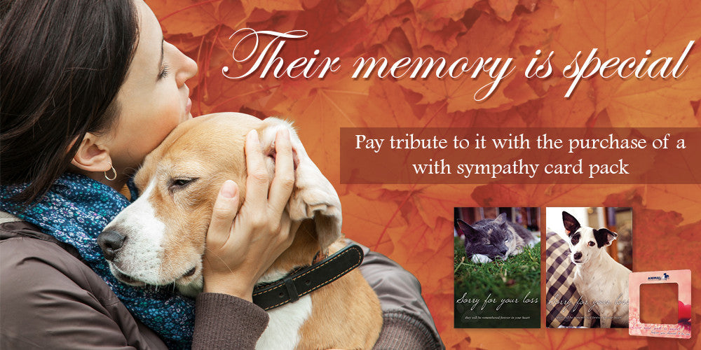 With Sympathy Cards