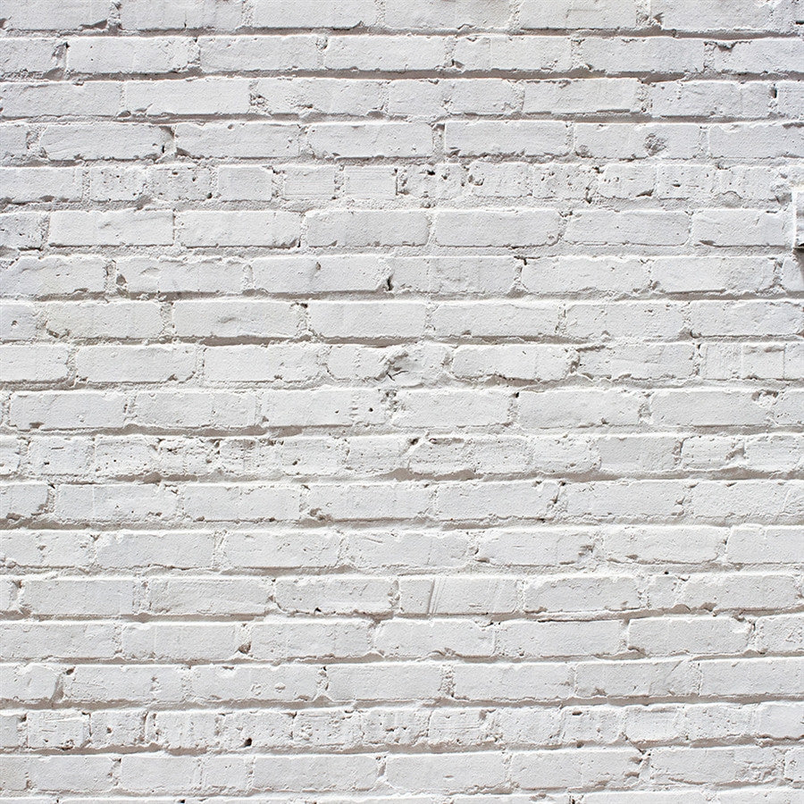 Brick Backdrop Historic Whitewash