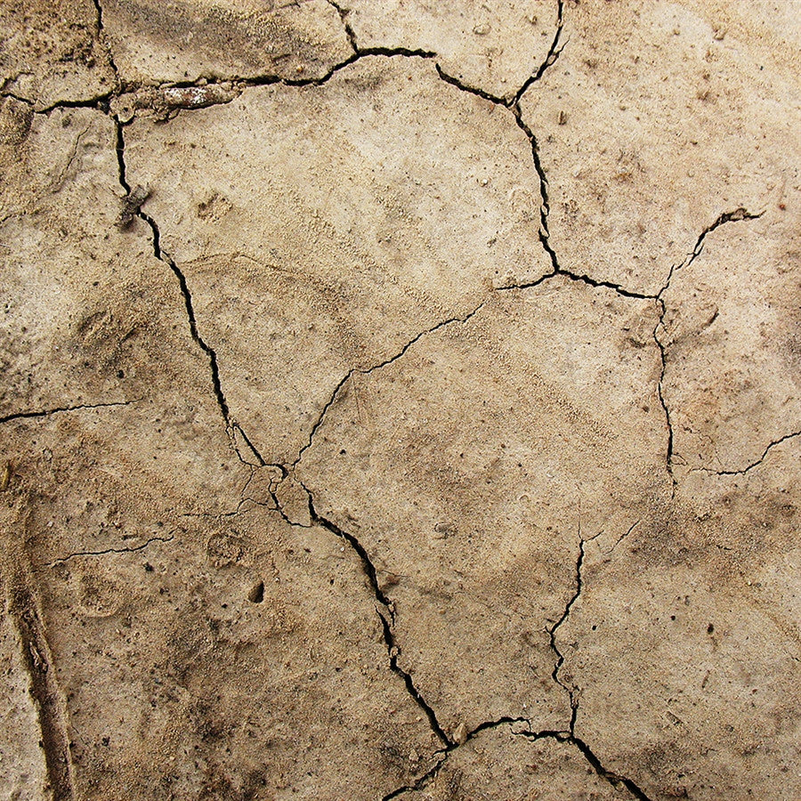 Nature Backdrop Floordrop Cracked Earth