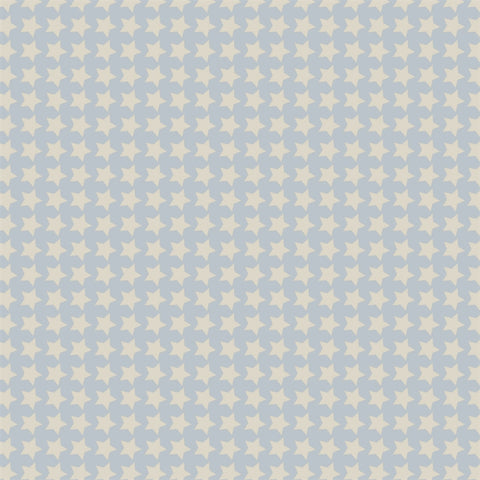 Pattern Backdrop Star Power in Blue and Cream