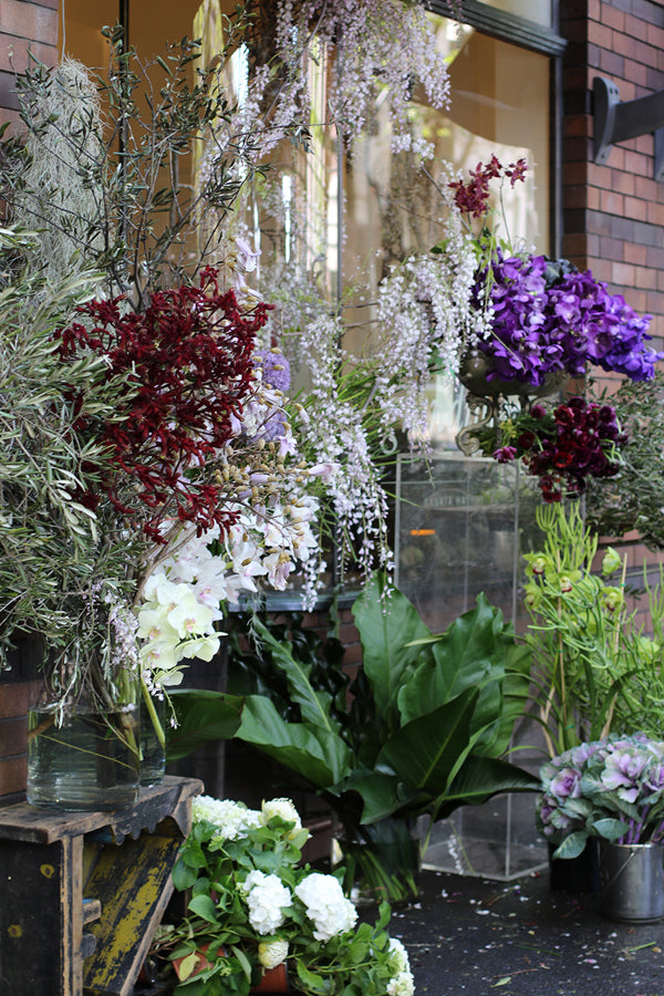 Grandiflora display
