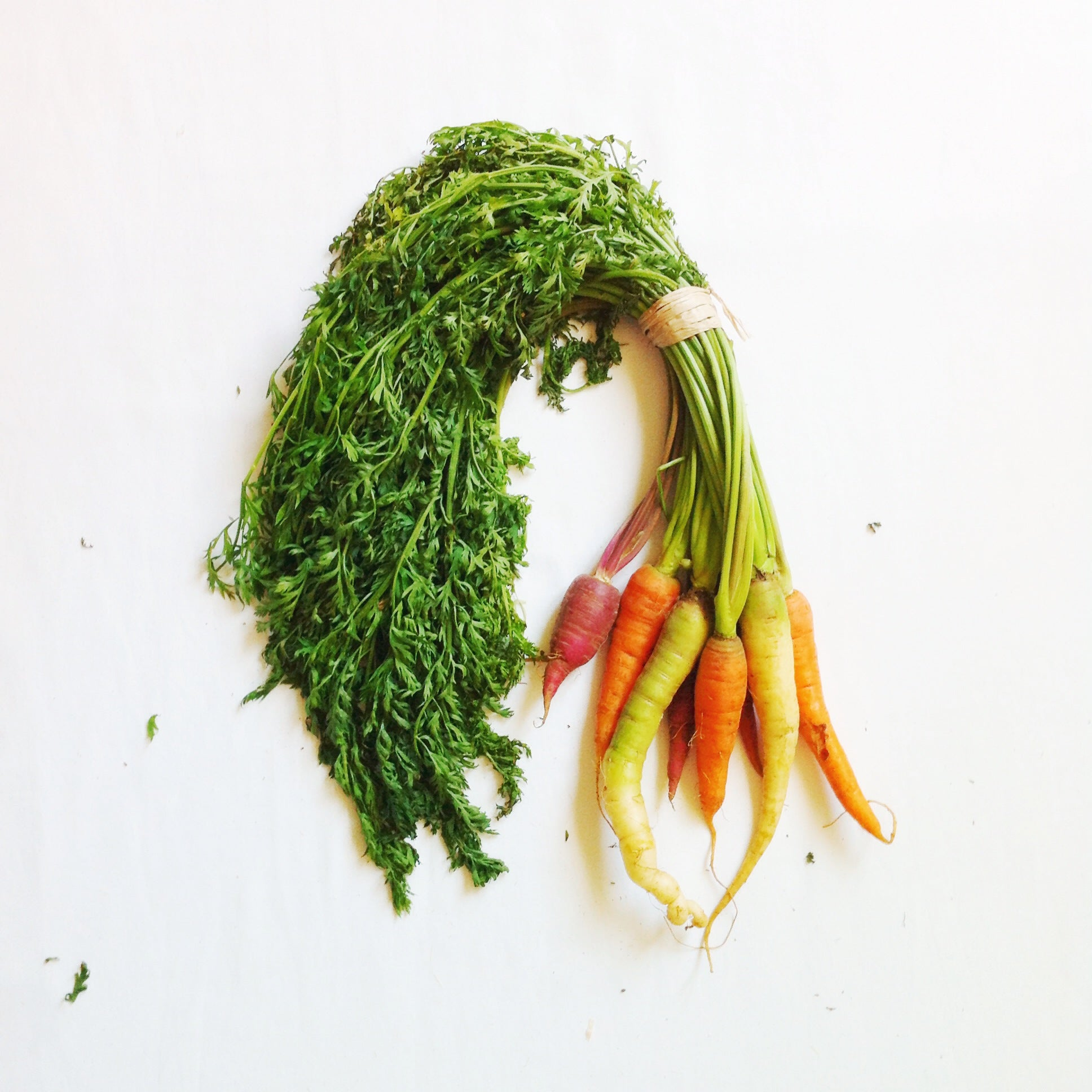 Get into it! Carrot Seed Oil Benefits for Hair