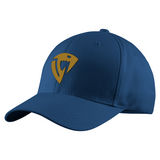 Fairy Tail Sabertooth Symbol Structured Twill Cap - PF00351TC - The TShirt Collection