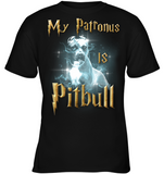 Pitbull Collection- Pit Bull,My Patronus - District Youth Shirt - SSID2016