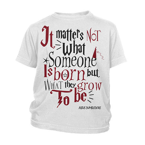 Harry Potter- it matters not what someone is born -District Youth Shirt - SSID2016