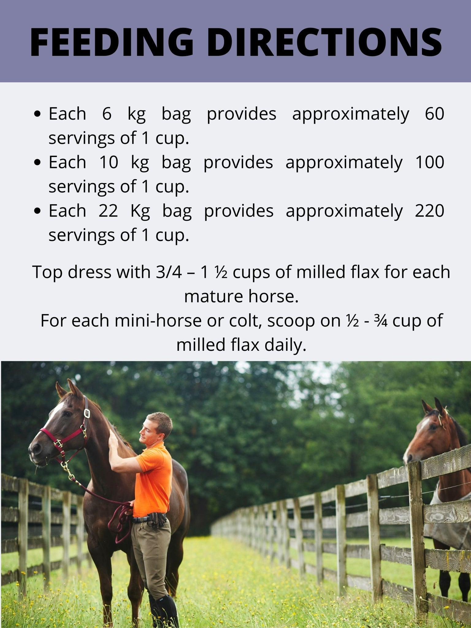Feeding Directions for Horses