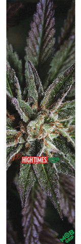 MOB HIGH TIMES MAGAZINE LA CONFIDENTIAL SHEET | 9X33 |