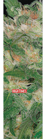MOB HIGH TIMES MAGAZINE WARLOCK MAGNUS GENETIC SHEET | 9X33 |
