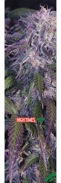 MOB HIGH TIMES MAGAZINE INCREDIBLE SHEET | 9X33 |