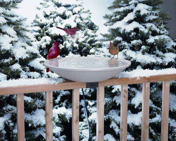 Birdbath-Heated-EZ Deck Tilt and Clean-Nature Lover