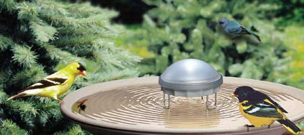 Solar-Water Wiggler-Birdbath-Loving Nature