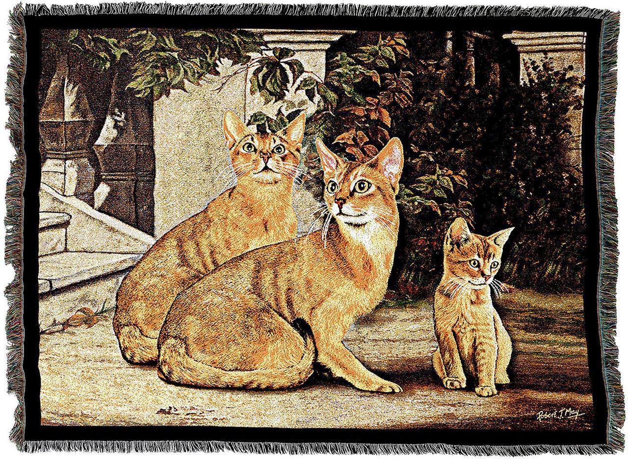 Throw Blanket-54 x 72-Animal Lover-Abyssinian Cats