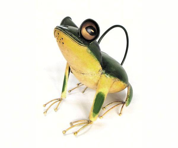 Tree Frog Watering Can - Expressions of Home