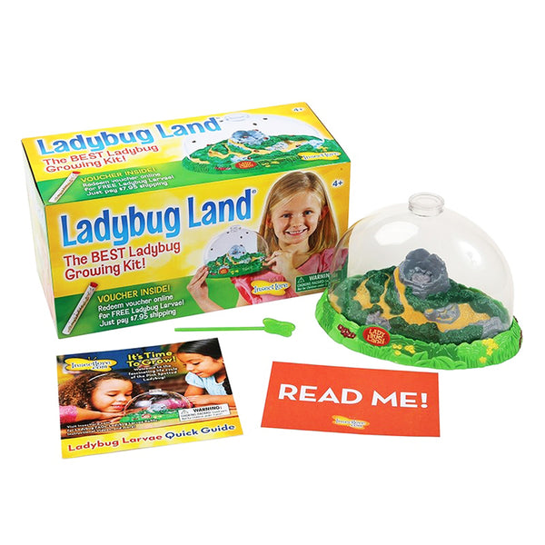 Educational-Kids-Nature-Ladybug Land