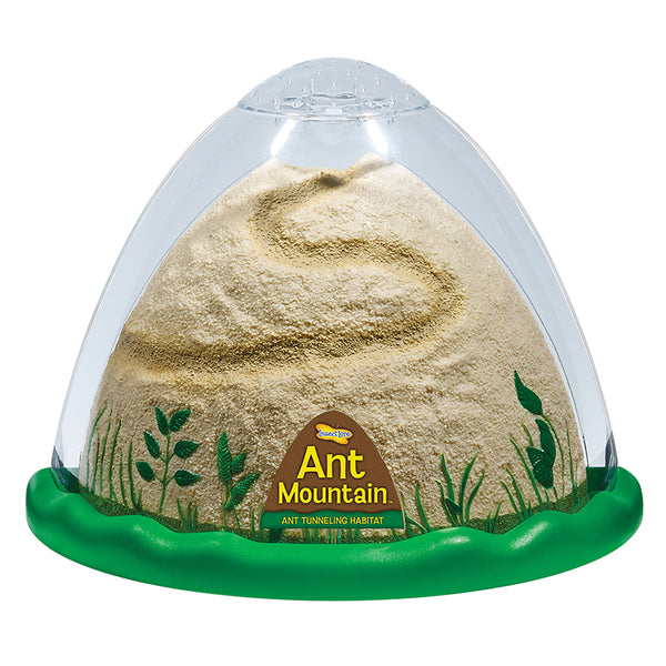Ant Mountain-Kids-Nature-Educational
