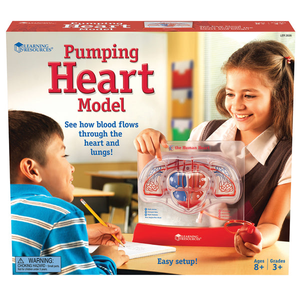 The Human Body-Educational-Pumping Heart Model-Children