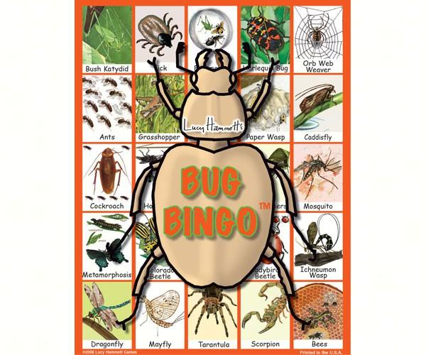 Educational  Game-Bug Bingo