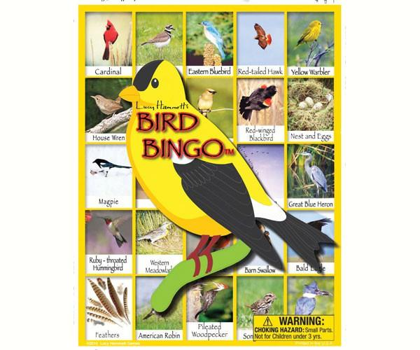 Educational Game-Bird Bingo