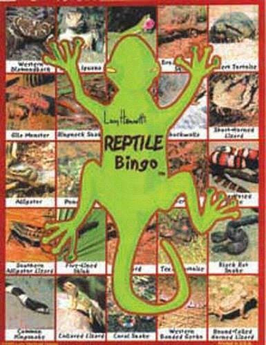 Reptile Bingo, Family Game - Seasonal Expressions