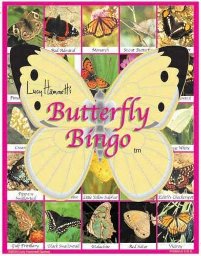 Educational  Game-Butterfly Bingo