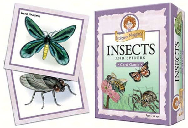 Flash Cards-Insects and Spiders-Prof Noggins