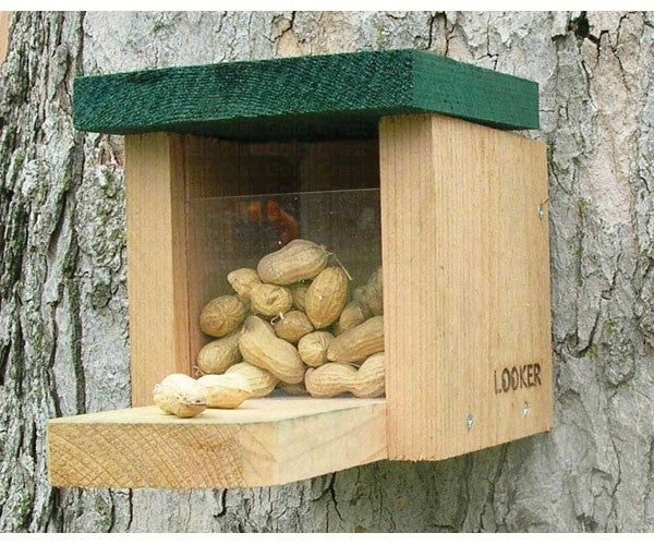 Squirrel Feeder-Snack Box-Nature Lover