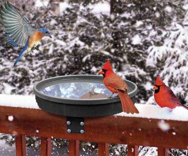 Birdbath-Heated-Songbird Spa-Nature Lover
