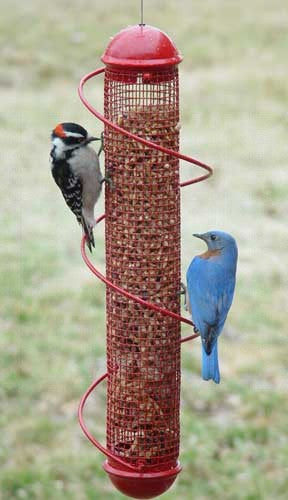 Songbird Essentials BirdQuest Spiral Feeders, patented Red Peanut Feeder - Expressions of Home