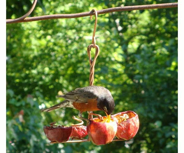 Birds-Fruit Feeder-Holds Four-Apple Anchor