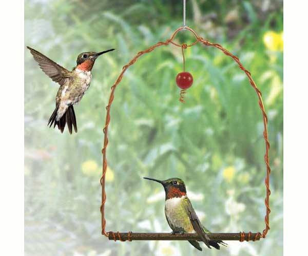Copper Hummingbird Swing - Expressions of Home